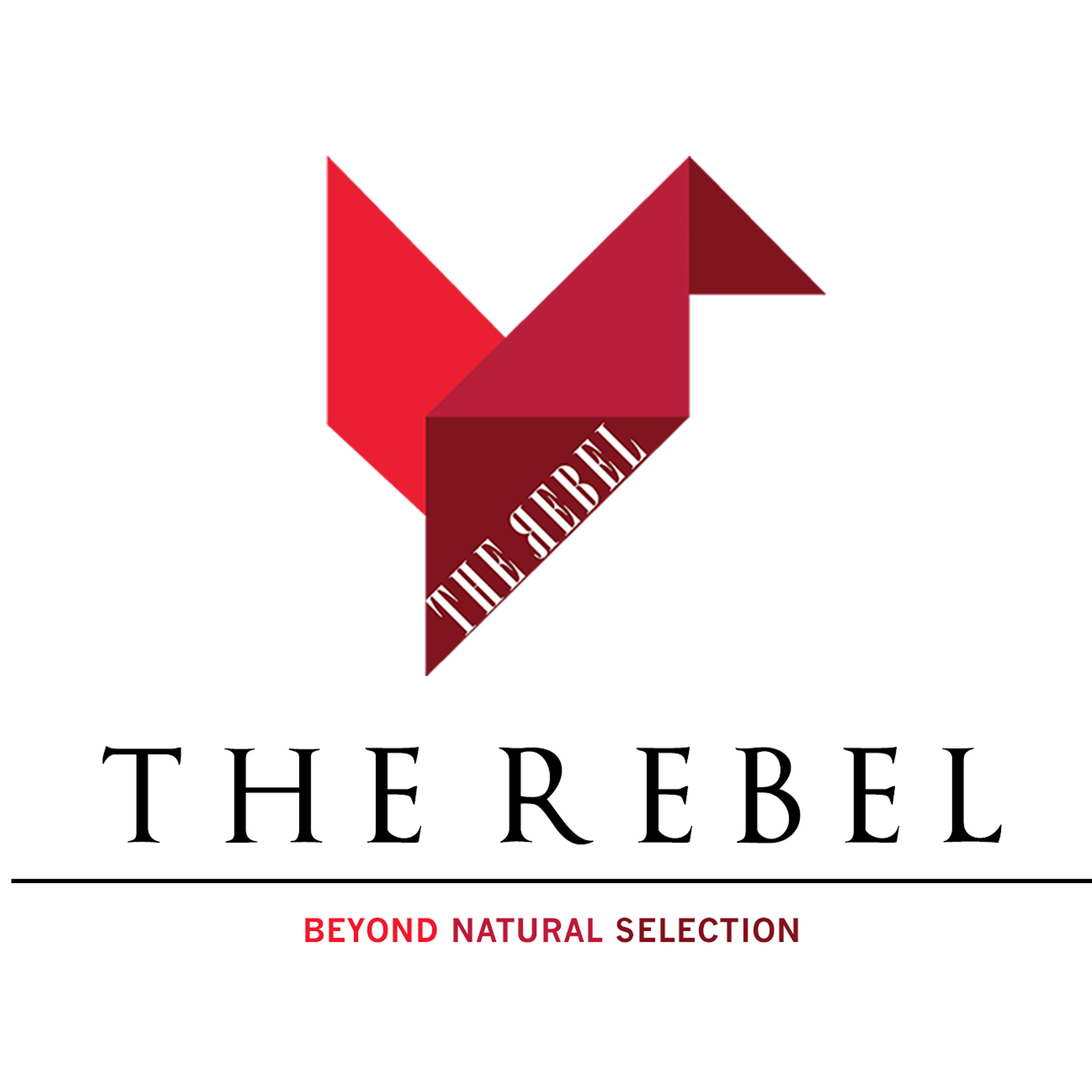 THE REBEL GUITARS